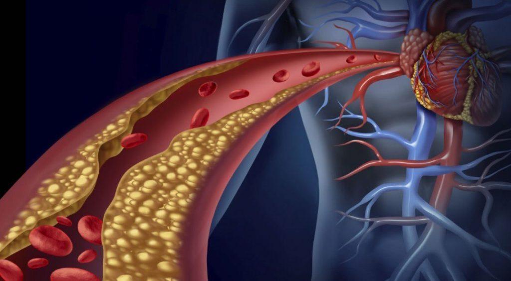 collagen heart health